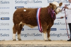 Daughter Drumacritten Delia 4,000gns