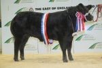 SEMENSTORE BULLS HELP THE CARCASE BREED TO 'SIX OF THE BEST' AT 2014 WINTER FAIRS
