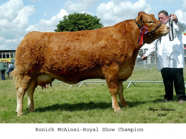 Ronick Mcainsi Royal Show 2004